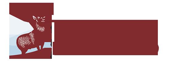 Hartford Flood Insurance >> The Hartford Insurance Tampa Frees Insurance